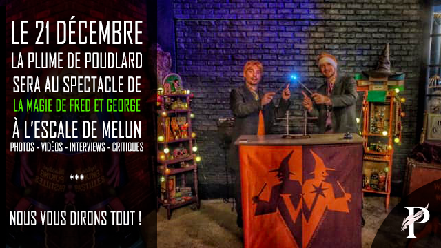 La Magie de Fred & George le 21 décembre à Melun