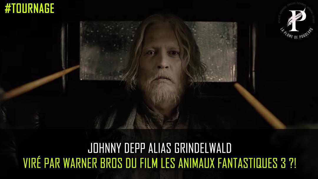 Johnny Depp alias Grindelwald Viré par Warner Bros du film Les Animaux Fantastiques 3 ?!