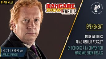 Mark Williams alias Arthur Weasley