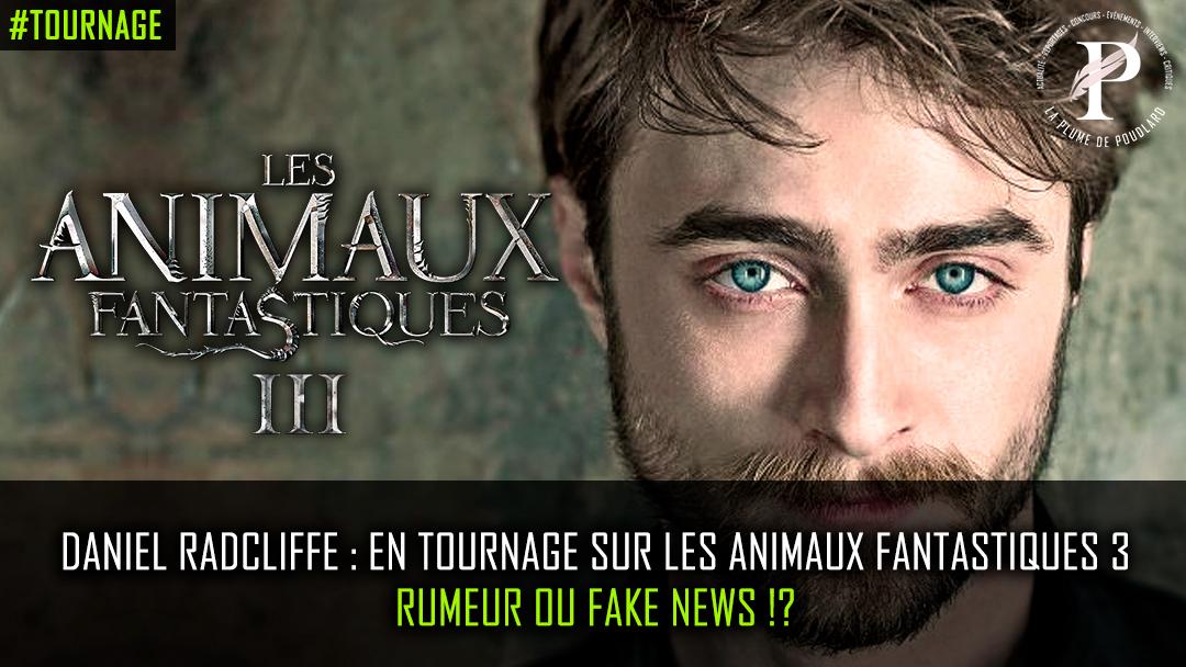 Harry Potter dans les Animaux Fantastiques 3 ?