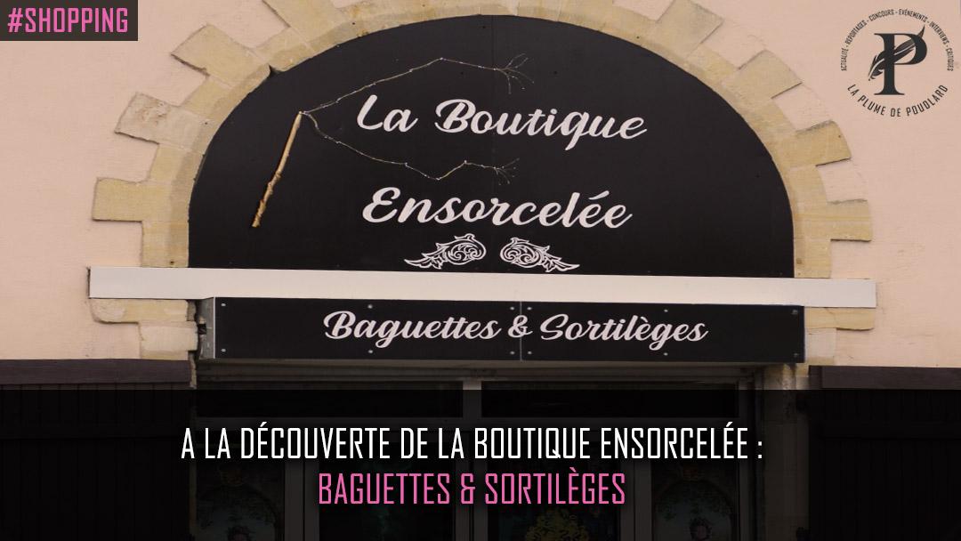 A la découverte de la boutique ensorcelée : Baguettes et sortilèges