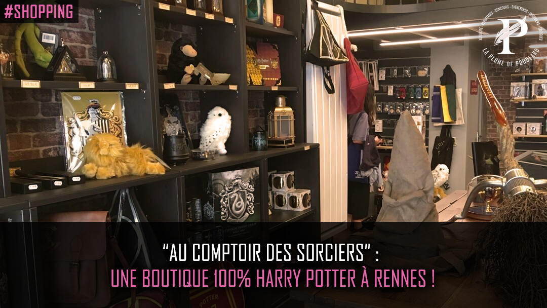 Au comptoir des sorciers une boutique 100 harry - Au comptoir des cotonniers ...