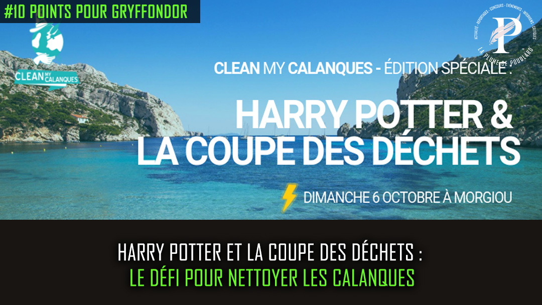 Harry Potter et la coupe des déchets : comment mêler fantaisie et écologie !