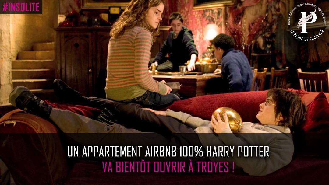 Un appartement AirBnB 100% Harry Potter va bientôt ouvrir à Troyes!