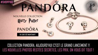 Pandora Harry Potter