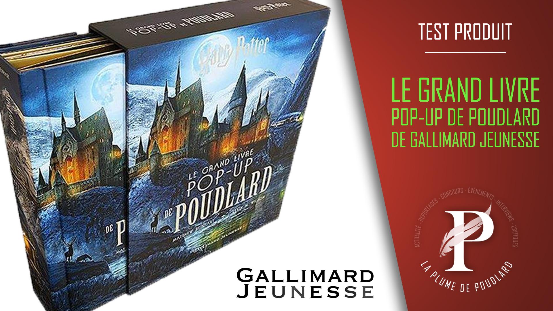Critique Litteraire Le Grand Livre Pop Up De Poudlard